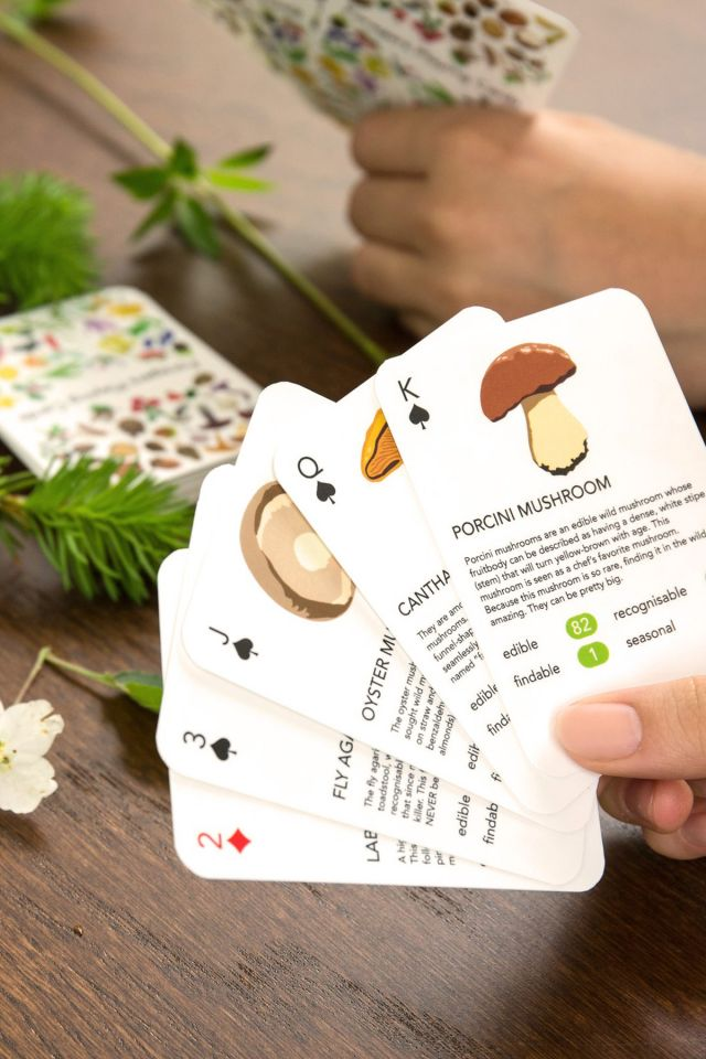 Playing Cards - Foragers