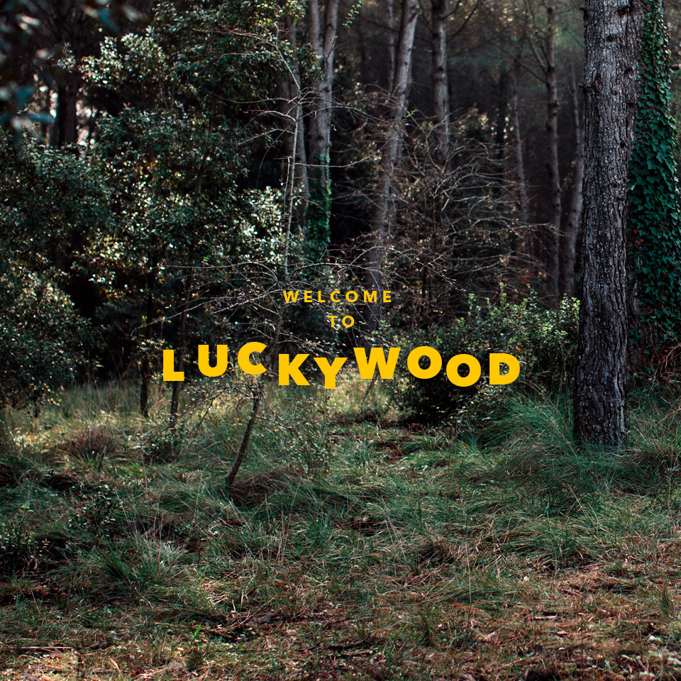 welcome to luckywood
